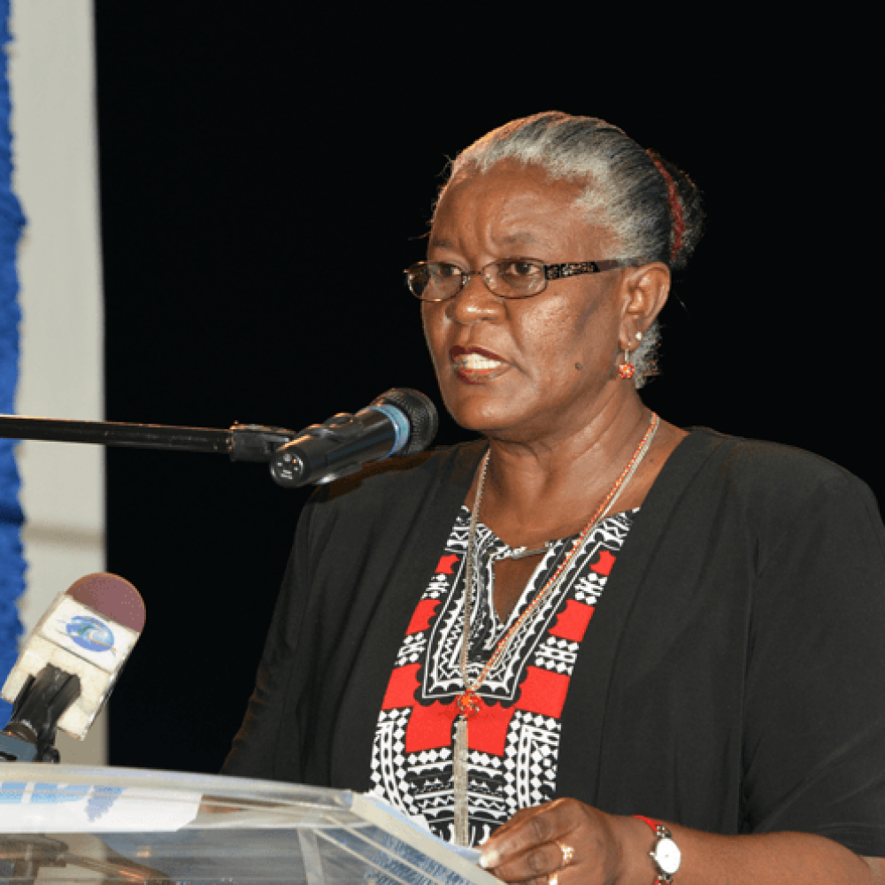 DPS Sonia Foster – IBW 2015 Opening Reception
